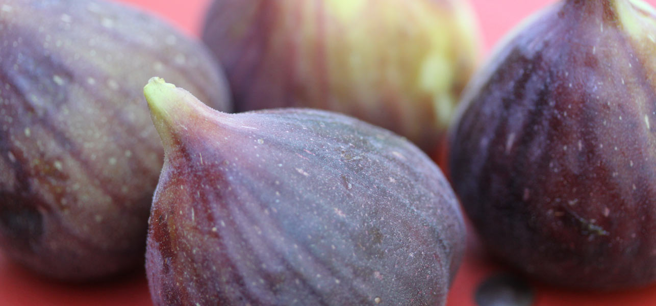 23 Stunning Advantages and Employments Of Figs
